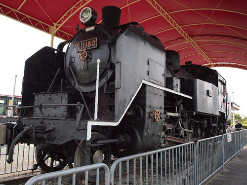 P4295966