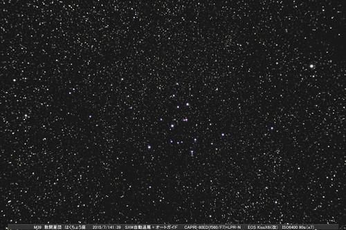 M3920150714jx8